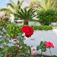 Отель Makarios Греция, Остров Санторини - отзывы, цены и фото номеров - забронировать отель Makarios онлайн фото 9