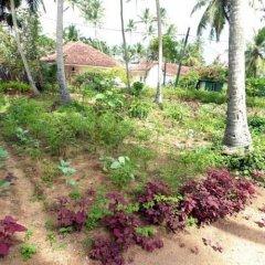 Отель Lotus Villa Шри-Ланка, Ахунгалла - отзывы, цены и фото номеров - забронировать отель Lotus Villa онлайн фото 3