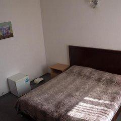 Гостиница Сапсан 3* Стандартный номер разные типы кроватей