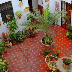 Отель Rincon de las Nieves Стандартный номер с различными типами кроватей фото 7