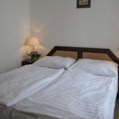 Hotel Jana / Pension Domov Mladeze Стандартный номер с двуспальной кроватью (общая ванная комната) фото 3