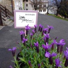 Отель B&B CleMaison Antica Dimora Сен-Кристоф фото 16