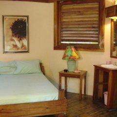 Отель Whistling Bird Resort комната для гостей фото 2