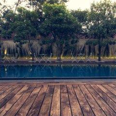 Отель Pledge 3 Шри-Ланка, Негомбо - отзывы, цены и фото номеров - забронировать отель Pledge 3 онлайн бассейн