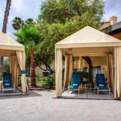 Отель Alexis Park All Suite Resort фото 5