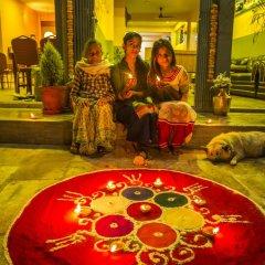 Отель Blossom Непал, Покхара - отзывы, цены и фото номеров - забронировать отель Blossom онлайн помещение для мероприятий