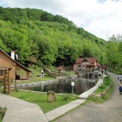 Гостиница Воеводино Курорт бассейн