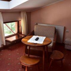 Family Hotel Bashtina Kashta 3* Стандартный номер с различными типами кроватей фото 2