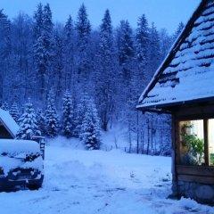 Отель Camping Harenda Pokoje Gościnne i Domki Закопане фото 3
