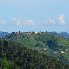 Отель B&B Il Trebbio Италия, Массароза - отзывы, цены и фото номеров - забронировать отель B&B Il Trebbio онлайн фото 3