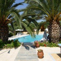 Отель Olympic Bibis Hotel Греция, Метаморфоси - отзывы, цены и фото номеров - забронировать отель Olympic Bibis Hotel онлайн бассейн