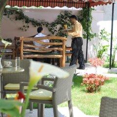 Отель Theranda Албания, Тирана - отзывы, цены и фото номеров - забронировать отель Theranda онлайн бассейн