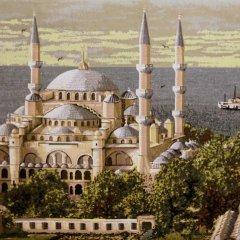 My Holiday Time Hotel Стамбул приотельная территория фото 2