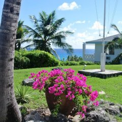 Отель Stella Maris Resort Club фото 5