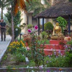 Отель Chitwan Adventure Resort Непал, Саураха - отзывы, цены и фото номеров - забронировать отель Chitwan Adventure Resort онлайн фото 6