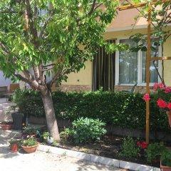 Отель Despina Болгария, Свети Влас - отзывы, цены и фото номеров - забронировать отель Despina онлайн фото 2