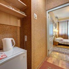 Гостиница Александрия 3* Стандартный номер с разными типами кроватей фото 24