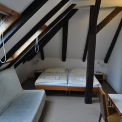 Hotel Svornost 3* Стандартный номер с различными типами кроватей фото 15