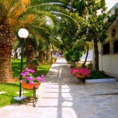 Отель Porfi Beach Hotel Греция, Ситония - 1 отзыв об отеле, цены и фото номеров - забронировать отель Porfi Beach Hotel онлайн фото 4