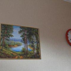 Гостиница Шер Стандартный номер с разными типами кроватей фото 4