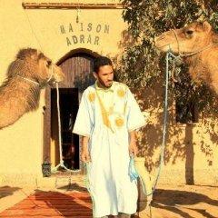 Отель Maison Adrar Merzouga Марокко, Мерзуга - отзывы, цены и фото номеров - забронировать отель Maison Adrar Merzouga онлайн фото 9
