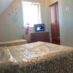 Гостевой дом Вилари 3* Стандартный номер разные типы кроватей фото 12