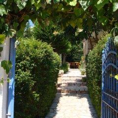 Отель Villa M Cako Албания, Ксамил - отзывы, цены и фото номеров - забронировать отель Villa M Cako онлайн фото 9
