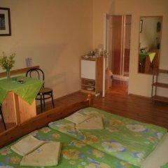 Отель Chebsky dvur - Egerlander Hof 3* Стандартный номер с различными типами кроватей фото 2