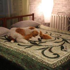 Mini-Hotel Leningradskiy 28 с домашними животными