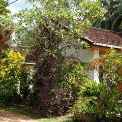 Отель The Tandem Guesthouse Шри-Ланка, Хиккадува - отзывы, цены и фото номеров - забронировать отель The Tandem Guesthouse онлайн фото 6