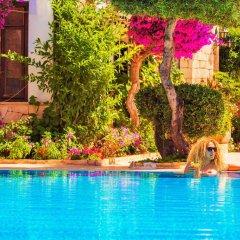 Amphora Hotel Турция, Патара - отзывы, цены и фото номеров - забронировать отель Amphora Hotel онлайн бассейн фото 3