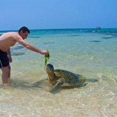 Отель Time n Tide Beach Resort фото 2