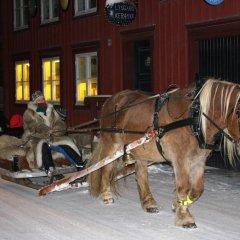 Отель Houmbgaarden городской автобус