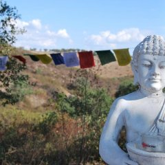 Отель Buddha Peaceful Oasis Алкасер-ду-Сал фото 6