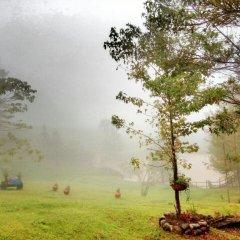 Отель y Cabañas Ros Гондурас, Тегусигальпа - отзывы, цены и фото номеров - забронировать отель y Cabañas Ros онлайн приотельная территория