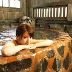 Отель Ryokan Fukumotoya Минамиогуни бассейн фото 2