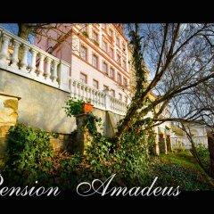 Отель Pension Amadeus фото 6
