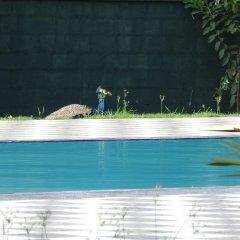 The Grand Yala Hotel бассейн