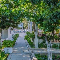Bodrum Maya Hotel фото 6