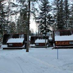Отель Camping Pod Krokwia Польша, Закопане - отзывы, цены и фото номеров - забронировать отель Camping Pod Krokwia онлайн