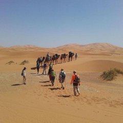 Отель Nomad Bivouac Марокко, Мерзуга - отзывы, цены и фото номеров - забронировать отель Nomad Bivouac онлайн спортивное сооружение