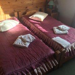 Гостиница Smerekova Khata Стандартный номер разные типы кроватей фото 3