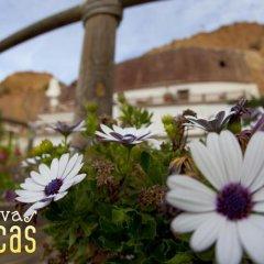 Отель Cuevas Blancas фото 4