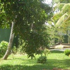 Отель Sethra Villas Шри-Ланка, Бентота - отзывы, цены и фото номеров - забронировать отель Sethra Villas онлайн