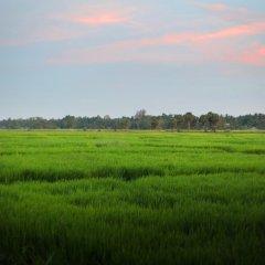 Отель Heaven Upon Rice Fields Шри-Ланка, Анурадхапура - отзывы, цены и фото номеров - забронировать отель Heaven Upon Rice Fields онлайн фото 2