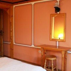 Отель Guest House Astra 3* Стандартный номер с различными типами кроватей фото 6