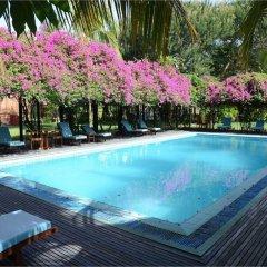 Thazin Garden Hotel бассейн