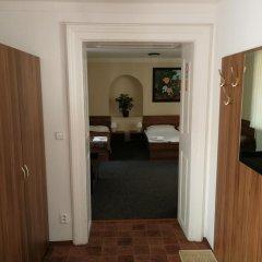 Апартаменты Apartments U Svejku Апартаменты с различными типами кроватей фото 7