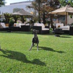 Отель InterContinental Los Angeles Century City at Beverly Hills США, Лос-Анджелес - отзывы, цены и фото номеров - забронировать отель InterContinental Los Angeles Century City at Beverly Hills онлайн с домашними животными