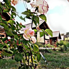 Отель Country Club Primi Faggi Санто-Стефано-ин-Аспромонте фото 7
